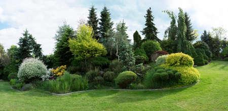 Prachtige lente tuin design, met conifeer bomen, groen gras en eneving zon
