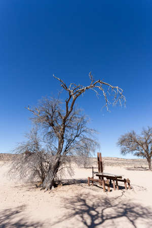 kgalagadi: stopover  rest place in Kgalagadi transfontier park, game reserve in South Africa with blue sky