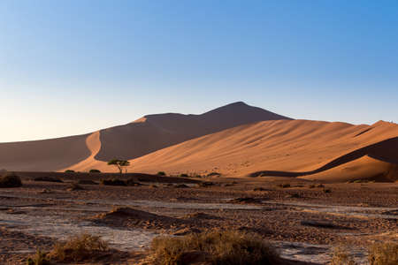 shaddow: beautiful sunrise landscape of hidden Dead Vlei in Namib desert, best place of Namibia Stock Photo