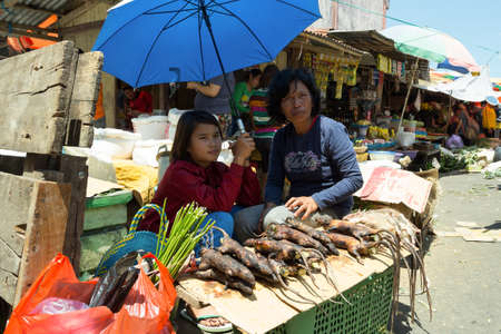 sulawesi: SULAWESI, INDONESIA - AUGUST 8.2015:, Local Speciality, roasted jungle rat on traditional Marketplace Sulawesi,August 8. 2015 Sulawesi, Indonesia.