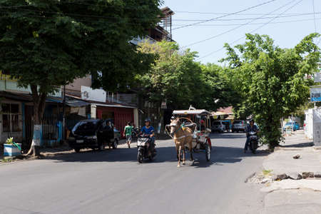 horse drawn: MANADO, NORTH SULAWESI, INDONESIA - AUGUST 5, 2015: Horse drawn carriage in the streets of Manado on August 5, 2015 in Manado, North Sulawesi, Indonesia