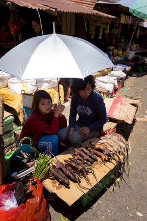 sulawesi: SULAWESI, INDONESIA - AUGUST 8, 2015:, Local Speciality, roasted jungle rat on traditional Marketplace Sulawesi,August 8. 2015 Sulawesi, Indonesia. Editorial