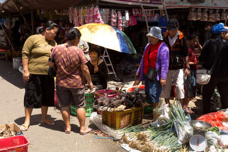 sulawesi: SULAWESI, INDONESIA - AUGUST 8, 2015:, Local Speciality, roasted stray dog on traditional Marketplace Sulawesi,August 8. 2015 Sulawesi, Indonesia.