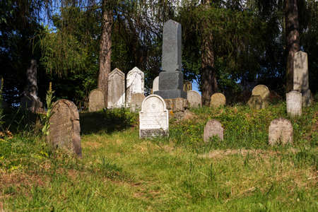 jewish: forgotten and unkempt Jewish cemetery with the strangers