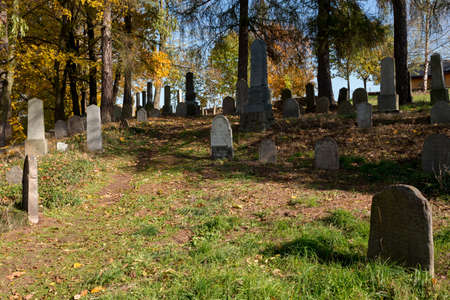 strangers: forgotten and unkempt Jewish cemetery with the strangers