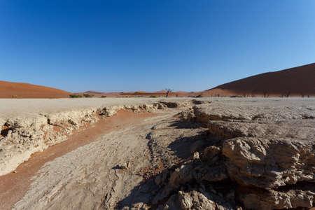 vlei: beautiful sunrise landscape of hidden Dead Vlei in Namib, blue sky, best place of Namibia