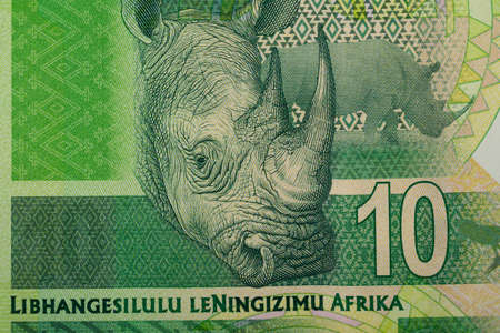 rand: Detail of rand banknote. South African rands is the national currency of South Africa