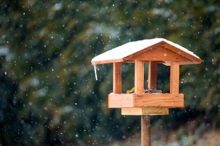 winter garden: simple homemade wooden bird feeder installed on winter garden in snowy day
