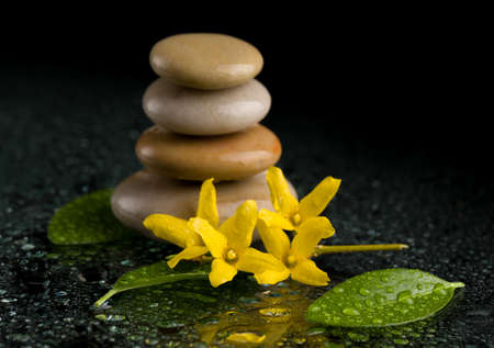 tranquil: balancing pebble stones and yellow flower with water drop, ZEN stone, on black background, spa tranquil scene concept with reflection