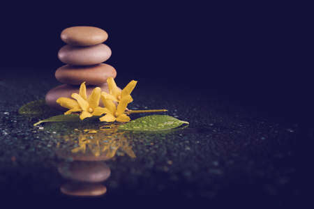 tranquility: balancing pebble stones and yellow flower with water drop, ZEN stone, on black background, spa tranquil scene concept with reflection, retro color pastel tone