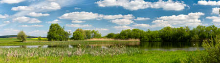 summer trees: panorama of Beautiful summer rural landscape with small lagoon. Rural landscape with pond. Spring landscape. Green czech countryside. Beautiful highland vysocina european countryside