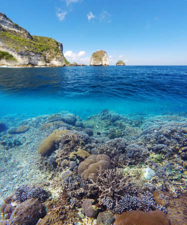 waterline: Underwater and surface split view in the tropics paradise with fish and coral reef, above waterline, beautiful view on tropical island. Nusa Penida bali, Indonesia. Stock Photo