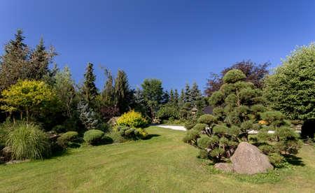 Schöne Sommer-Garten-Design, mit Nadelbäumen, grünes Gras und Morgensonne. Schneiden Sie Gras, Konzept Professionelle Luxus Gartenarbeit.