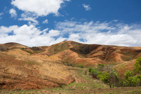 Traditional Madagascar highland landscape. Deforestation in Madagascar creates agricultural or pastoral land but can also result ecology problem with soil and water. Madagascar
