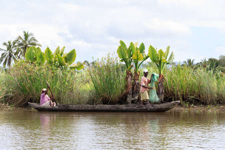 penury: MADAGASCAR OCTOBER 19.2016 Malagasy countryside people from village transport freight by Traditional handmade dugout wooden boat. Everyday life on the river. Maroantsetra October 19. 2016, Madagascar.