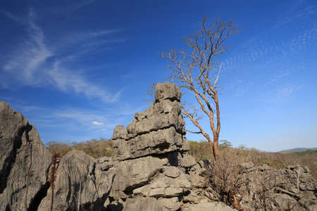 reserve: Curiously strange rock formations of fantastically eroded limestone spires, known as Tsingy in amazing National Park Ankarana, Madagascar wilderness