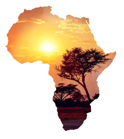 African sunset with acacia, Map of africa continent concept, Africa safari nature wilderness concept