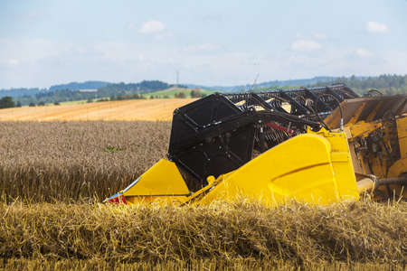 Yellow harvester automatic combine on field harvesting wheat in summer. Agriculture harvesting concept Stock Photo