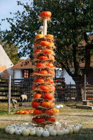 秋のハロウィーンの装飾とファームの静物としてトーテムに絞首刑に収穫された完熟カボチャ。田舎のシーン