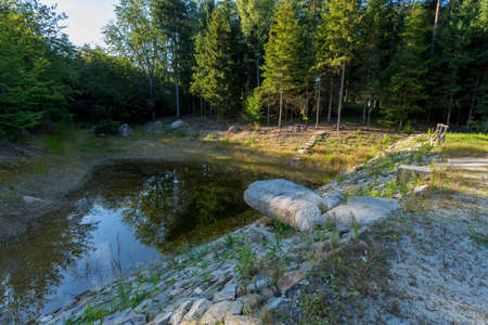 pond in the forest at summer. background, nature landscape