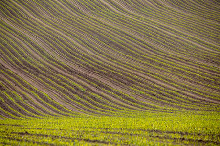 spring rural landscape with plowed field lines and curves Stock Photo