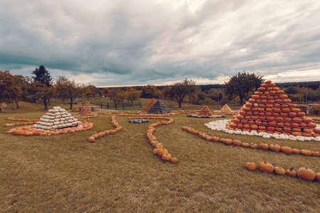 pyramid from autumn harvested pumpkins arranged for fun with color variations. Halloween holiday concept on pumpkin world. Stock Photo