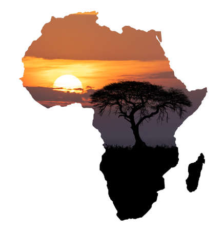 Typical african scenery, silhouette of large acacia tree in the savanna plains on africa continent shape map, Africa wildlife and wilderness sunset concept Фото со стока