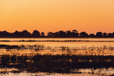 sunset on Chobe river, Chobe national park, Botswana, Africa wilderness Stock Photo
