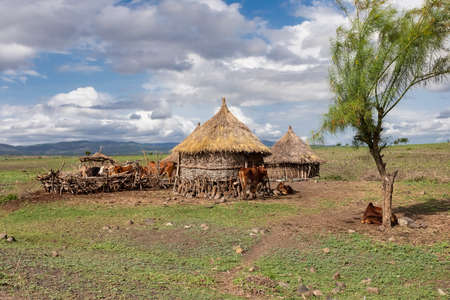 Ethiopian landscape with traditional ethiopian houses for cattle near Karat Konso. Ethiopia countryside, Africa