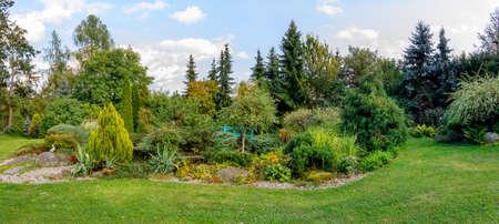 Schöner Herbstgarten mit immergrünen Nadelbäumen. Herbstgartenkonzept