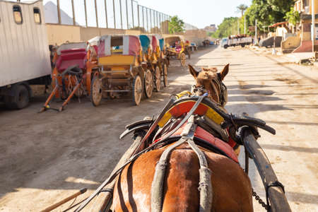 View from horse chariot on a downtown street in shantytown of Cairo near great pyramids, Giza Cairo, Egypt