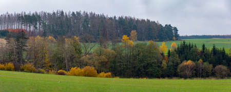 Autumn landscape colored trees and meadow, Highland Vysocina, Czech Republic