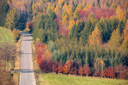 view of a colorful deciduous forest and rural road, in autumn with multicolored yellow, orange, red and green foliage on the trees in a scenic full frame view of the changing seasons.Czech Republic Highland Vysocina