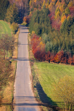 view of a colorful deciduous forest and rural road, in autumn with multicolored yellow, orange, red and green foliage on the trees in a scenic full frame view of the changing seasons. Czech Republic Highland Vysocina