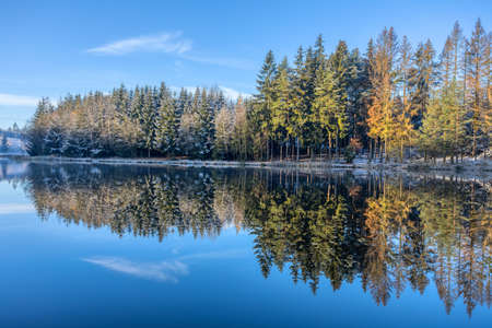 Beautiful Reflections of spruce tree covered by snow in Lake blue water, Czech Republic, Vysocina Europe nature Banco de Imagens