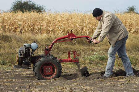 gasoline powered: DIKANKA, UKRAINE - SEPTEMBER 30, 2015: Country farmer is plowing his garden with walk-behind garden tractor.
