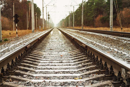 railway transportation: toned photo of railway tracks in closeup in the forest