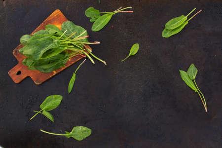 blackout: Fresh leaves of sorrel on cutting board on a dark metallic background. blackout photo