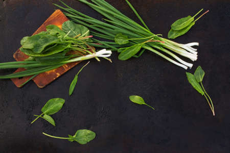 blackout: leaves of sorrel and green onion on cutting board on a dark metallic background. blackout photo
