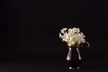 textural: bouquet of small white flowers in a ceramic jug on a dark textural background