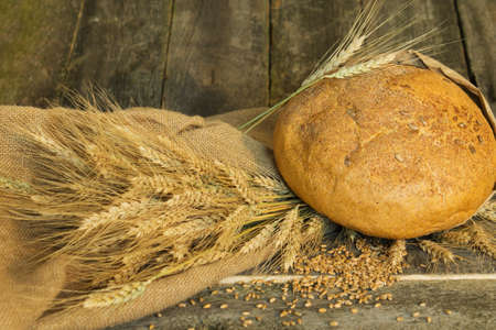 wheat grain: bread with ears and wheat grain closeup on a rough cloth on a wooden background