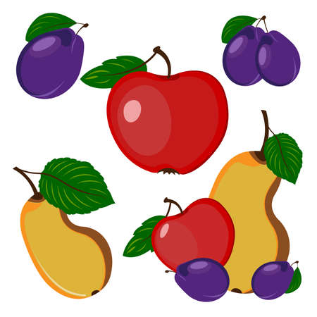 outumn: Beautiful and bright fruits, Plum, apple and pear