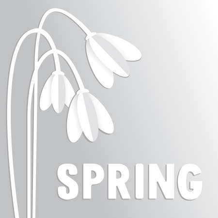 snowdrops: Greeting card with nice snowdrops in the paper style
