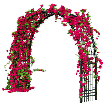 Metal pergola with rose buds and leaves that looks as ivy pergola