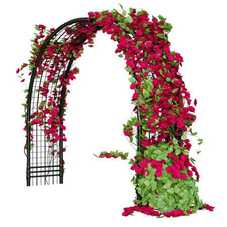 jardines con flores: pérgola arqueado para los fines de jardinería con rosas y algunas hojas