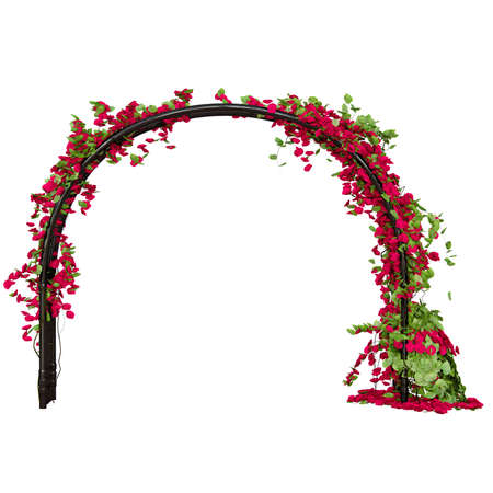 pergola: Arched pergola with red rose buds and green leaves