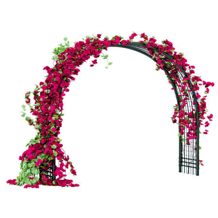 Metal arbor with red rose buds and green leaves pergola Stock Photo