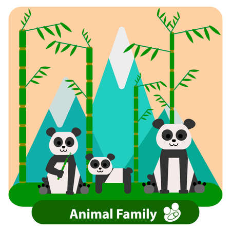 panda cub: Family panda cub on the background of bamboo and mountains, in a plane, conceptual and illustrative style. It can be used for design of cards or covers. Vector illustration