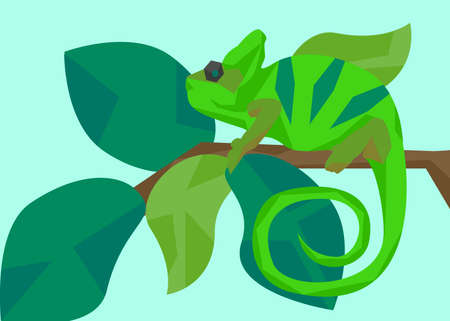 sits: Green chameleon masquerades as the color of the leaves on the branch on which it sits. Animals and nature. In flat polygon style for design applications and sites. Vector illustration