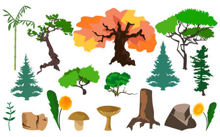 fungi: Set different plants trees fungi, stones, flowers. In flat polygon style design for applications and websites. Vector illustration